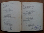Бандурист сборник малорусских песен 1910 г, фото №8