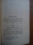 А.Т. Грабина 1911 Записки Божевильного. Небувальщина, фото №8