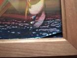 """""""Аисты на закате""""б.см.т. 30х40 см. Евг.Сивоплясов, фото №10"""