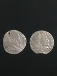 Две монеты Сигизмунда lll, фото №2