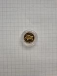 Монета 2гр. Черепаха золото, фото №5