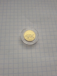 Монета 2гр. Черепаха золото, фото №6