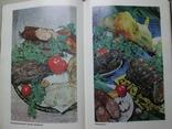 Настольная книга по домашнему консервированию, фото №5