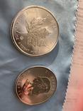 Канада 5 долларов 2020 серебро 999 унция, фото №4