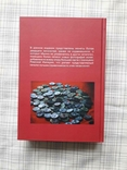 Римские императорские монеты. К. Кастан, К. Фустер. Репринт, фото №3