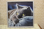 Кот ,автор Сорока, фото №2