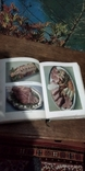 Книга Кулинария 1955 год, фото №8