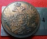 5 копійок 1855 року. Росія / Супер- КОПІЯ/ не магнітна, мідна- лот 1штука, фото №3