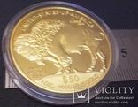 50 доларів США 2015 року. не  магнітний,   (позолота 999)  копія, фото №4