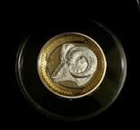 Год Козы, высокий рельеф - серебро 999 с позолотой, унция - Полный Комплект., фото №3