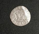 Півгрош 1507, фото №2