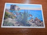 Остров Сент-Онора, Франция, Канны, монастырь, фото №2