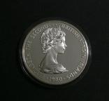 Британские Виргинские Острова, 5, 1980 - Большая Голубая Цапля. ПТИЦЫ - серебро,, фото №5