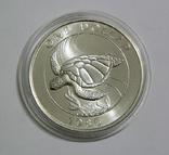 Бермудские Острова, 1 доллар,1986 - Всемирный фонд дикой природы. ЧЕРЕПАХА - серебро, фото №4