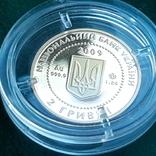Скіфське золото. Кабан 2 гривні 2009, фото №6