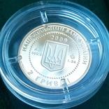 Скіфське золото. Кабан 2 гривні 2009, фото №8