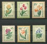 Болгария 1960 цветы, фото №2