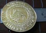 Медаль 1933 року Німеччина. Копія пробної. Позолота 999, фото №4