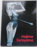 Каталог картин Хаяме Сараяма, фото №2