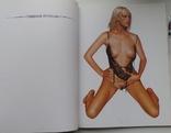 Каталог картин Хаяме Сараяма, фото №5