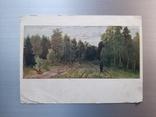 """1957г. Издательство """"Правда"""". Тропинка в лесу, фото №2"""