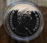 Канада 1 доллар 1980 г. Серебро. Арктические территории. Медведь., фото №3