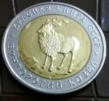 5    рублів 1991 Росія копія, фото №3