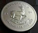 1  крюгеренд 1984 року Південна Африкакопія золотої /поЗОЛОТА 999/, фото №2