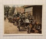 Нацистская Германия сигаретные вкладыши, фото №9
