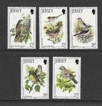 Джерси 1993 птицы, фото №2