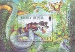 Джерси 2001 БЛ год дракона, фото №2