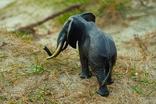 Слон - бронза, фото №6