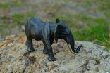 Слон - бронза, фото №7
