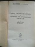 Лекарственные растения и способы их приминения в народе 1960г., фото №3