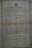 Аттестат Брежнева 1917 год.(Водяные знаки)., фото №9