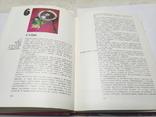 Кулинария 1981г. 422 стр., фото №7