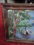 Лебедь плавает в озере, фото №3