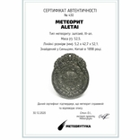 Двосторонній кулон із метеорита Aletai, 52,5 грам, із сертифікатом автентичності, фото №3