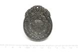 Двосторонній кулон із метеорита Aletai, 52,5 грам, із сертифікатом автентичності, фото №4