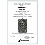 Кулон-амулет Дракон із метеорита Aletai, 95,2 грам, із сертифікатом автентичності, фото №3