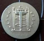 Давня Греція Осеон Спак- копія золотої,  не магнітна, позолота 999., фото №3