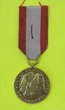 Золотая медаль За заслуги при защите страны, фото №2