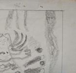 "Л.Ястреб ""Монументальный эскиз"",б.карандаш,31х21см,1970-е гг., фото №4"