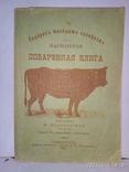 Поваренная книга 1911 год Копия, фото №2