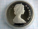 1 доллар, Канада, 1987 г., 400 лет открытию пролива Дейвиса, серебро, 0.500, 23.33 гр., фото №3