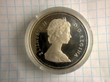 1 доллар, Канада, 1987 г., 400 лет открытию пролива Дейвиса, серебро, 0.500, 23.33 гр., фото №9