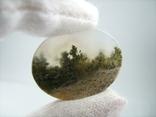 Натуральный пейзажный моховый агат. Индонезия. 164, фото №4