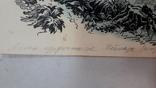 Неймарк Л. Літо туристичне 1983р. малюнок туш, фото №11