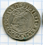 Сігізмунд І грош 1531р. Гданськ, Данціг, фото №2