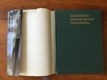 Книга по искусству СССР 1978 г художники венецианской террафермы, фото №3